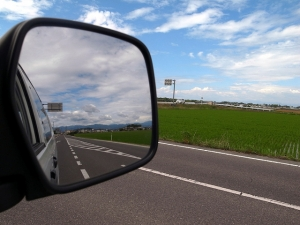 Identifying Blind Spots: How to Make a CEO Successful in the Role
