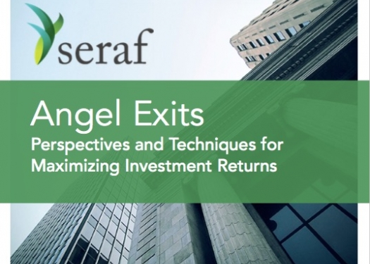 Angel Exits: Perspectives and Techniques for Maximizing Investment Returns