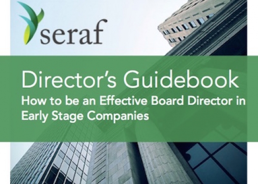 Director's Guidebook for Early Stage Investors