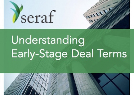 An Investor's Guide to Early Stage Deal Terms