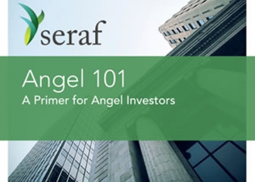 Cover of Angel 101: A Primer for Angel Investors